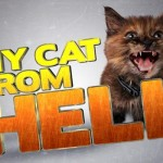 My cat from Hell: El encantador de gatos
