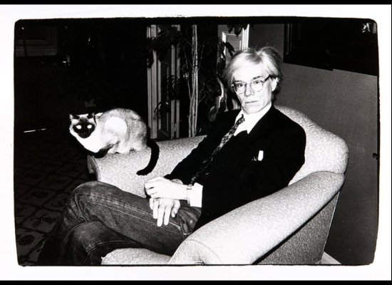 Andy Warhol Cats And Dogs