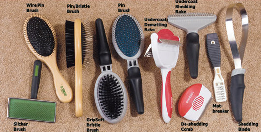 Dog Grooming Combs Types