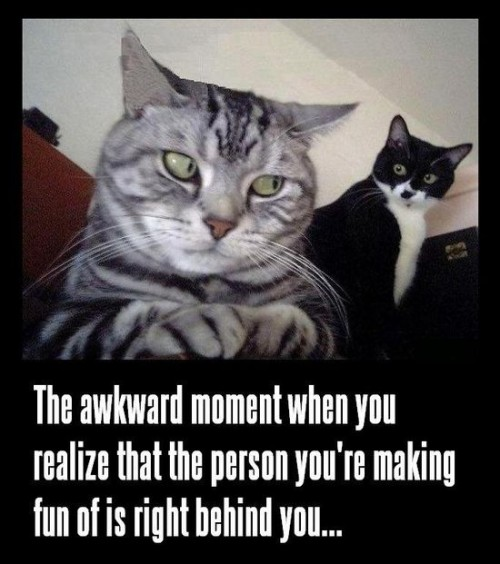 That-Awkward-Moment...-Which-Defines-My-Liferepin-Bypinterest++-For-Ipad