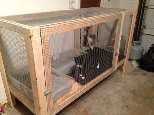 Large Indoor Dog Cage