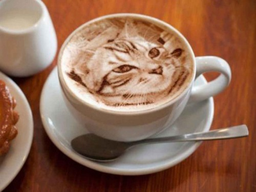 Gato real cafe
